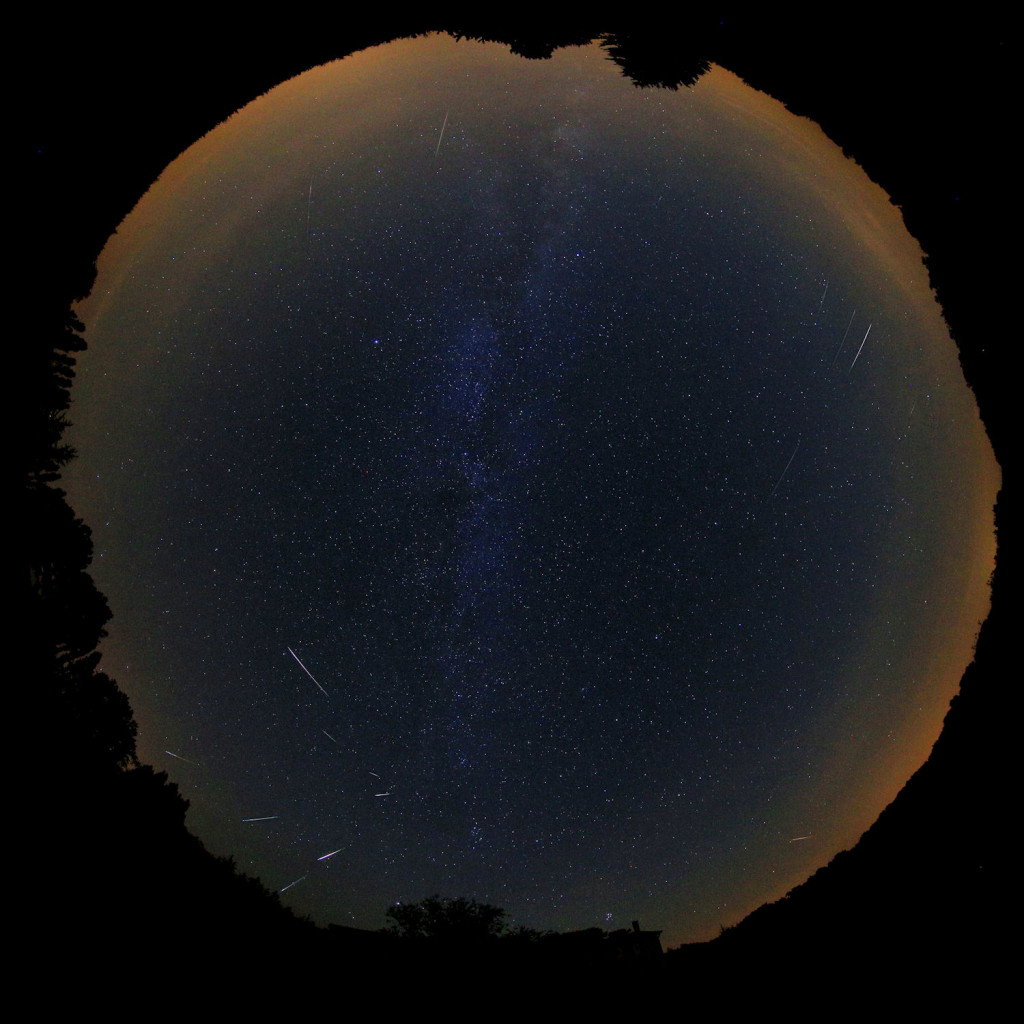 Figure 2 – Composition of all Perseids captured on August 13, 2015 between 00h00m and 03h15m UT.