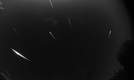 Perseids 2019: Another peak in activity around solar longitude 141.0?