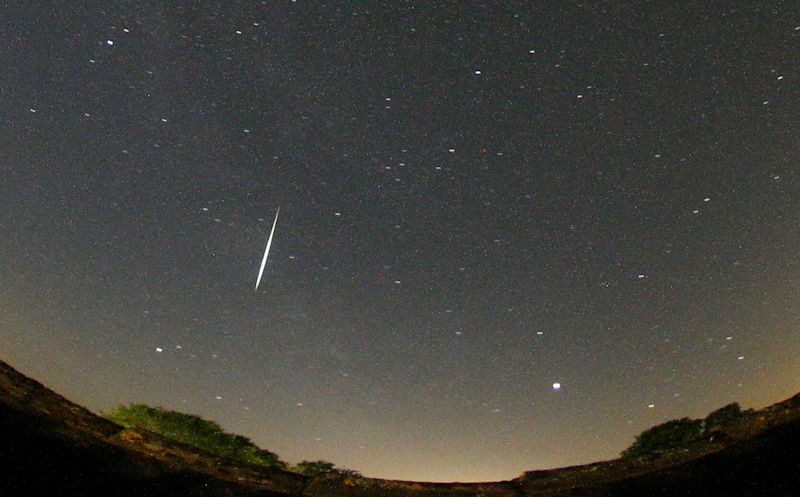 Midsummer meteor observations from the Netherlands