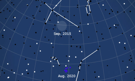 Possible upcoming return of the chi Cygnids in September 2020