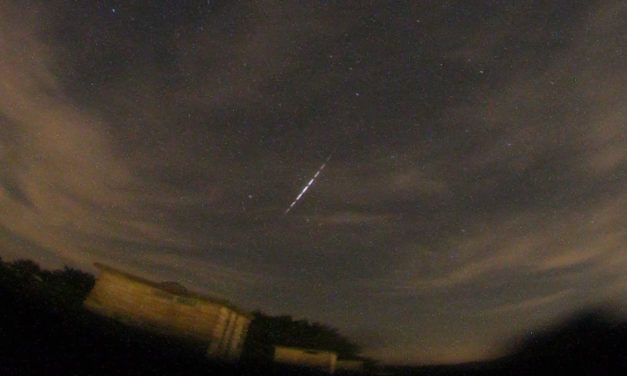 Perseid observations from Ermelo, the Netherlands