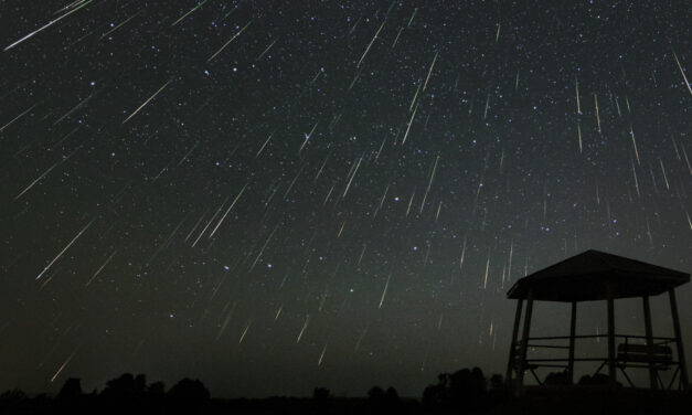 The big surprise: a late Perseid outburst